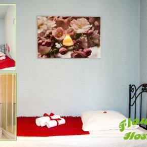 Hostely a ubytovny - Hostel Flower