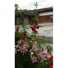 Hostely a ubytovny - Birdsnest Hostel Hongdae