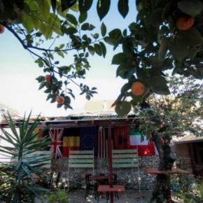 Hostely a ubytovny - The Wanderers Hostel