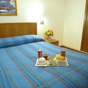Hostely a ubytovny - Hotel Adelchi