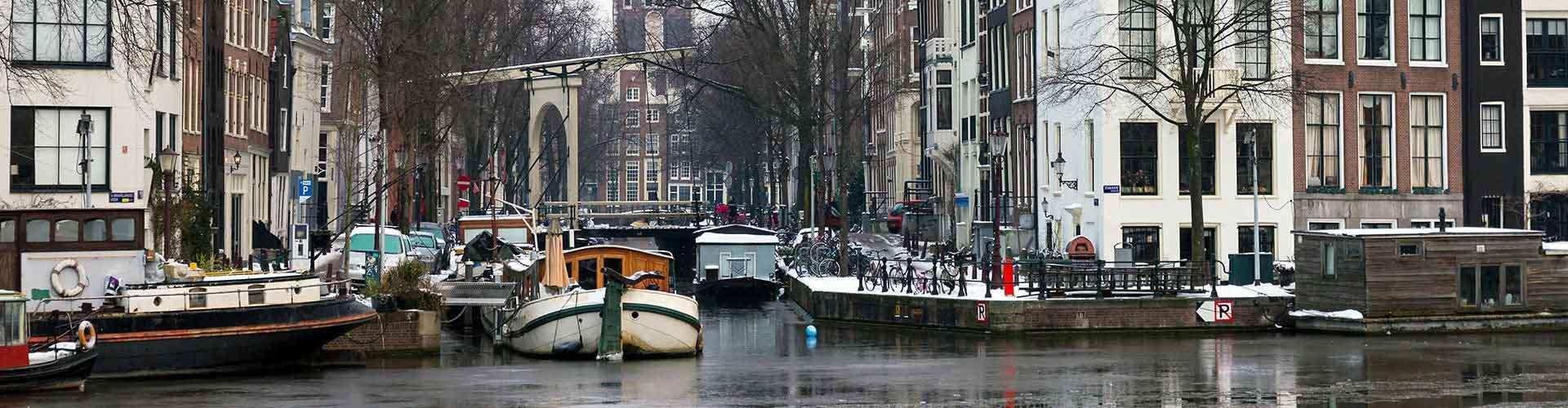 Amsterodam - Hostelů ve čtvrti Amsterdam Oud Zuid. Mapy pro Amsterodam, fotky a recenze pro každý hostel v Amsterodam.