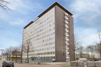 Hostely a ubytovny - Dutchies Hostel