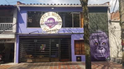 Hostely a ubytovny - Purple Monkey Hostel