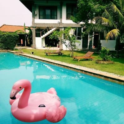 Hostely a ubytovny - Freedom Hostel Bali