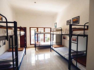 Hostely a ubytovny - Hostel Uluwatu Backpackers