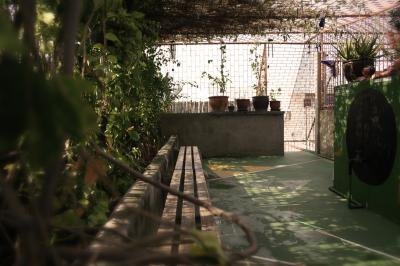 Hostely a ubytovny - Born Free Hostel - Vista