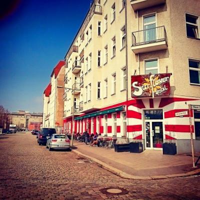 Hostely a ubytovny - Sunflower Hostel Berlin